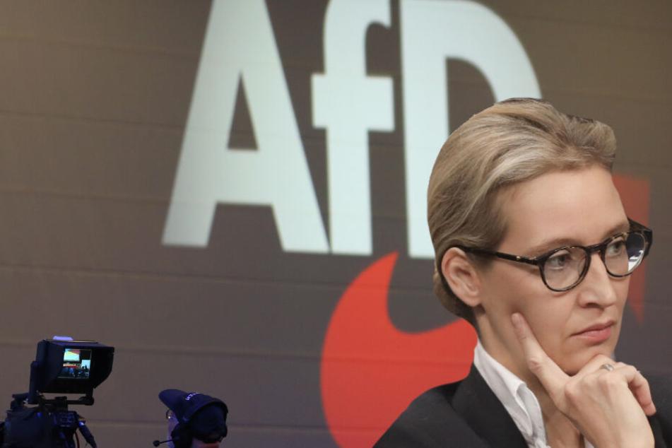 Spenden-Skandal: AfD legt der Bundestagsverwaltung Gönner-Liste vor