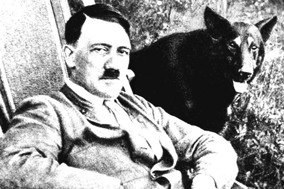 Eine Film-Aufnahme zeigt Adolf Hitler neben seinem Hund.