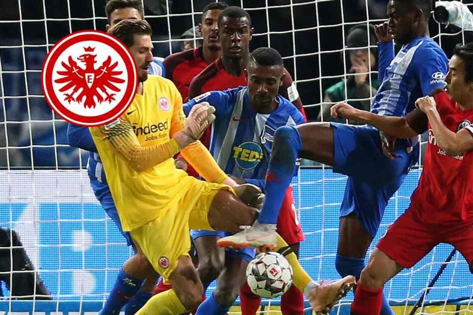 Ist der Höhenflug vorbei? Eintracht verliert auch gegen Hertha BSC