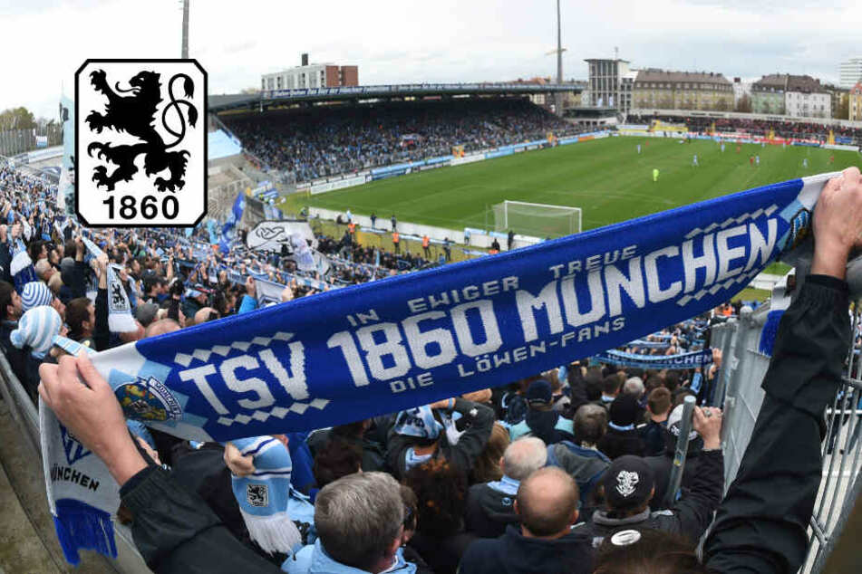 TSV 1860 München: Grünwalder Stadion soll zweitligatauglich werden!