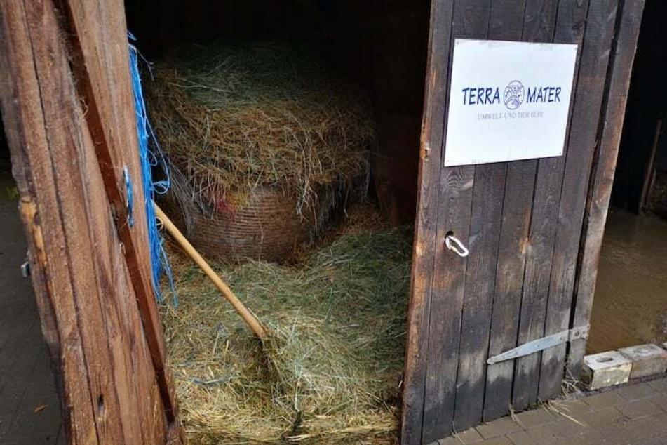 In Eschweiler wurde ein schuleigener Tierhof - ein Projekt von Terra Mater - von der Flutkatastrophe getroffen.