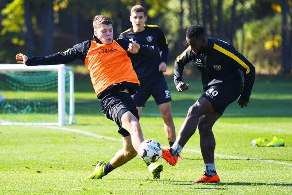 Kevin Ehlers (l.) beim Dynamo-Training im Kampf um den Ball mit Erich Berko.