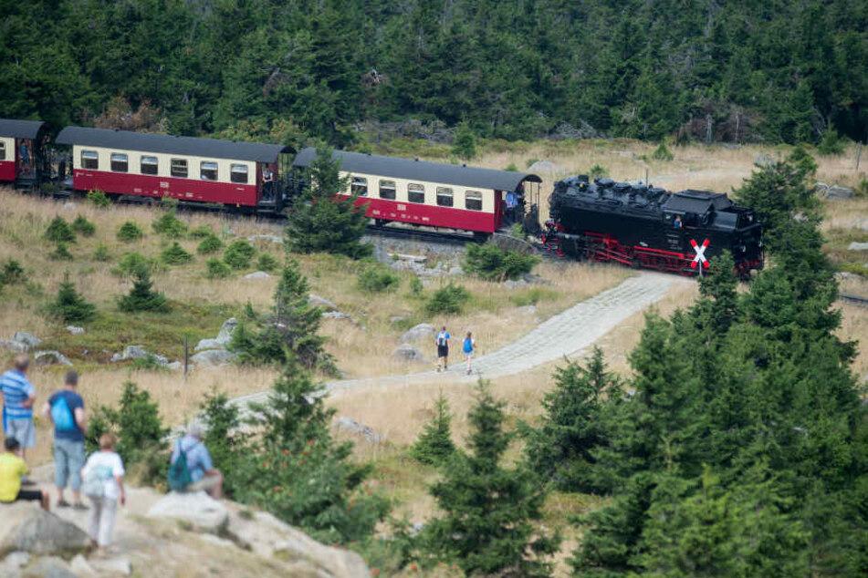Wegen Sturmböen haben die Harzer Schmalspurbahnen den Zugverkehr zum Brocken eingestellt (Symbolbild).