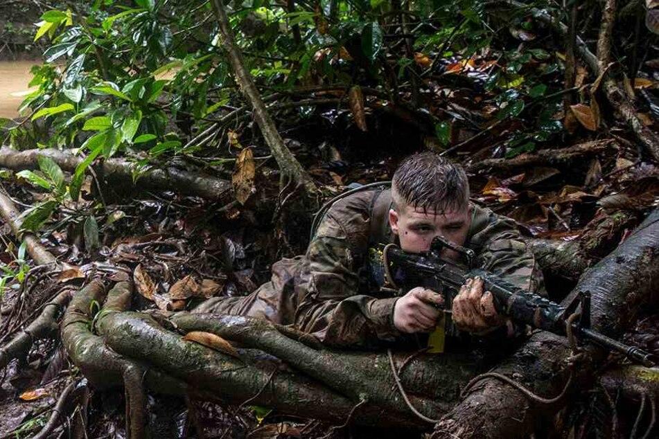 Militär-Training im Dschungel: So hart werden Soldaten gedrillt