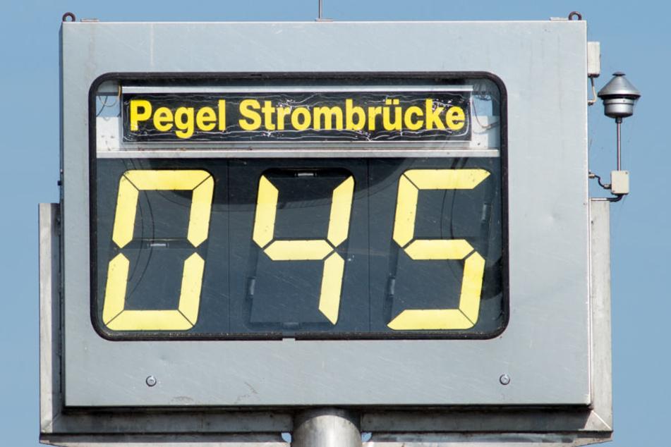 Im Durchschnitt liegt der Wasserstand der Elbe an dieser Stelle 1,8 Meter.