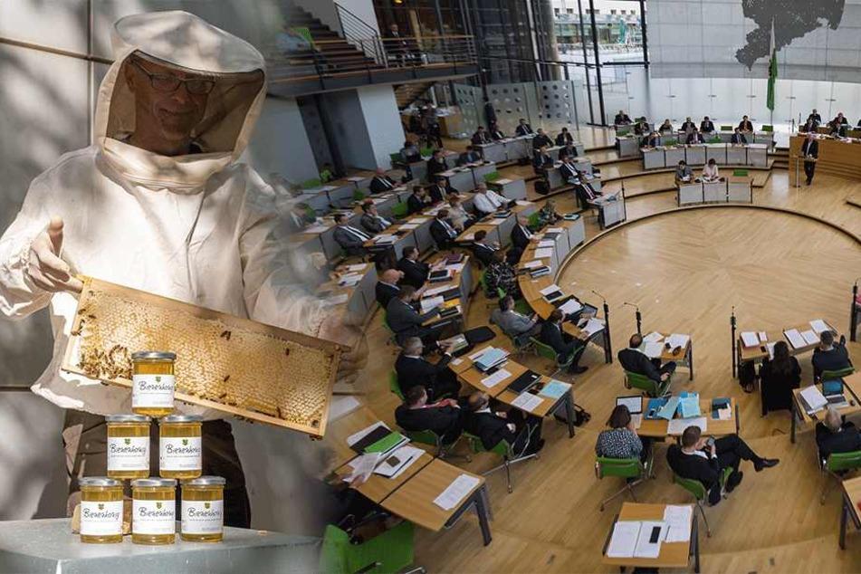 3400 Anfragen, 26 Gesetze: So fleißig waren Sachsens Landtags-Abgeordnete