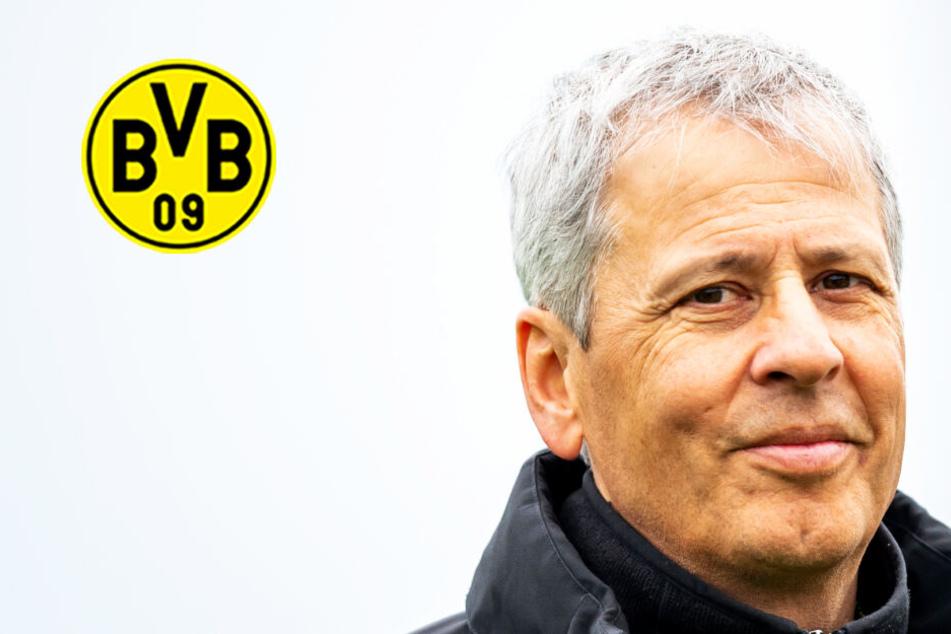 BVB plagen weiter Verletzungssorgen! Haaland wird noch geschont