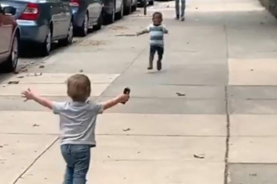 Finnegan (li.) und Maxwell (re.) laufen freudig aufeinander zu.