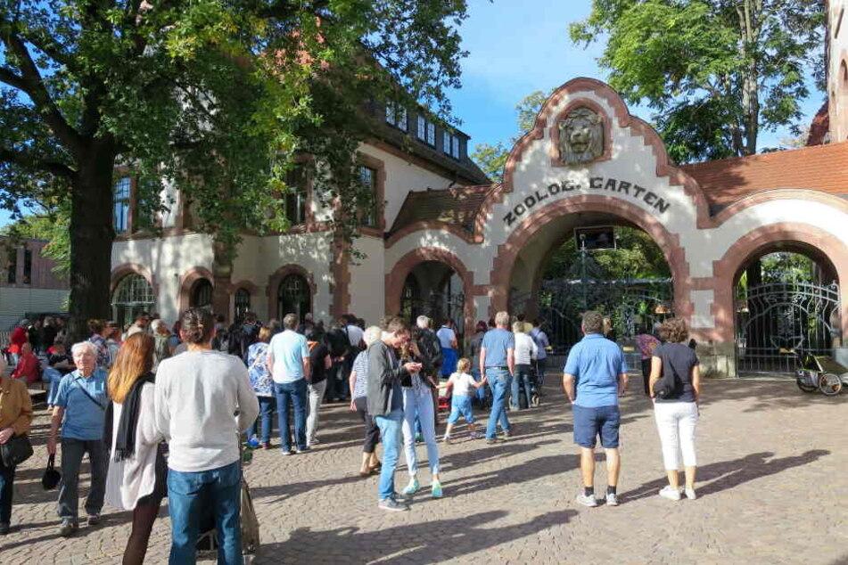 Im Zoo Leipzig hat es am Mittwoch einen Todesfall gegeben.