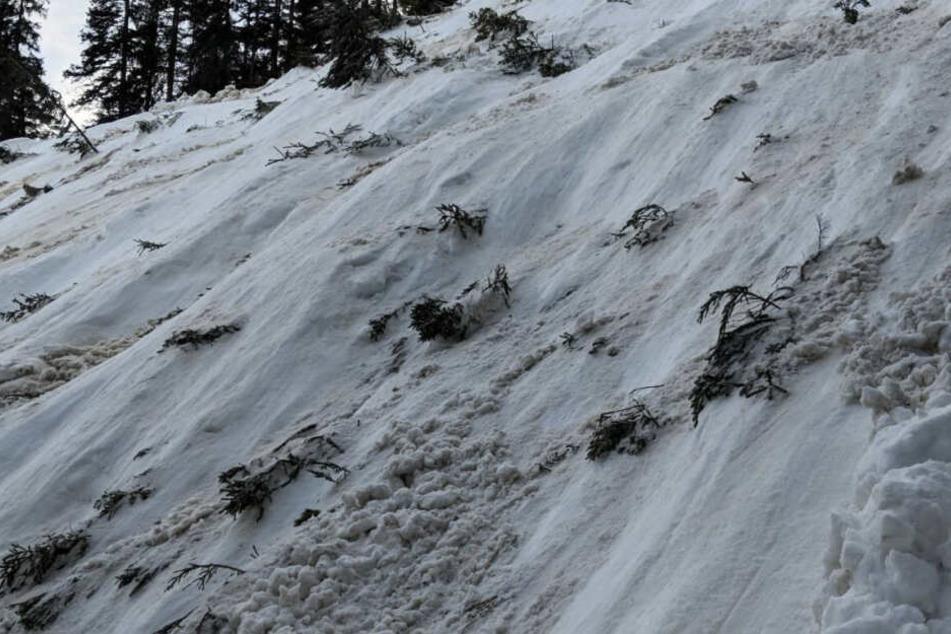 Ein Abhang im Ortsteil Ammerwald ist nach einer Lawine mit Schnee beschüttet. Bei dem Lawinenabgang unweit der deutsch-österreichischen Grenze ist eine Person ist gestorben.