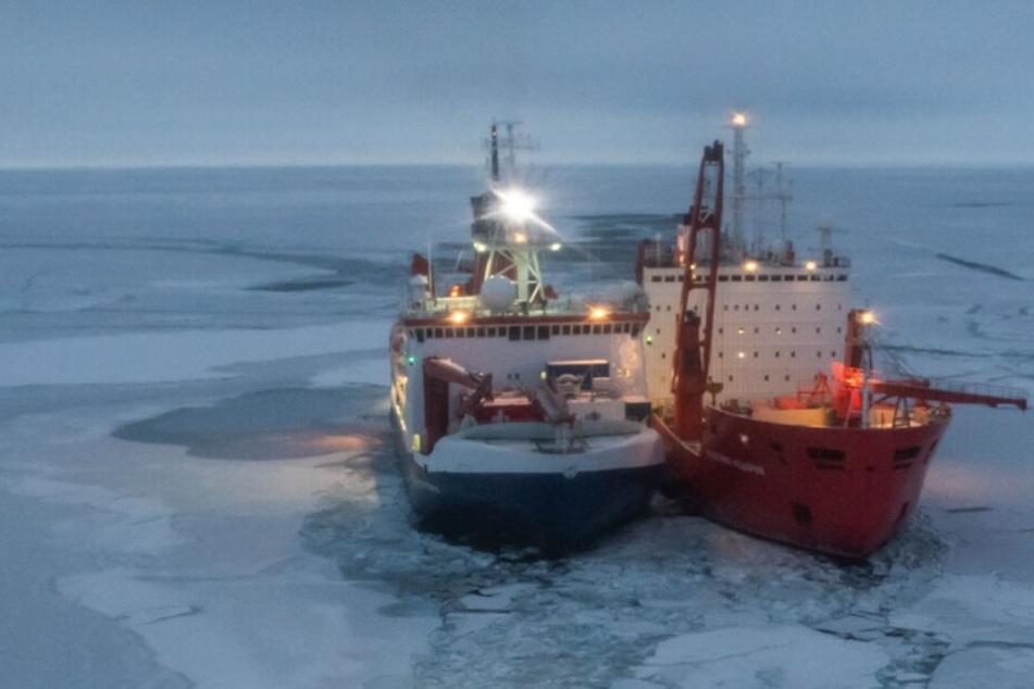 """Weihnachten in der Arktis: """"Polarstern""""-Forscher feiern mitten im Packeis"""