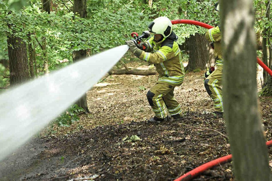 In Pottschapplitz bei Bischofswerda brannte ein Weizenfeld.