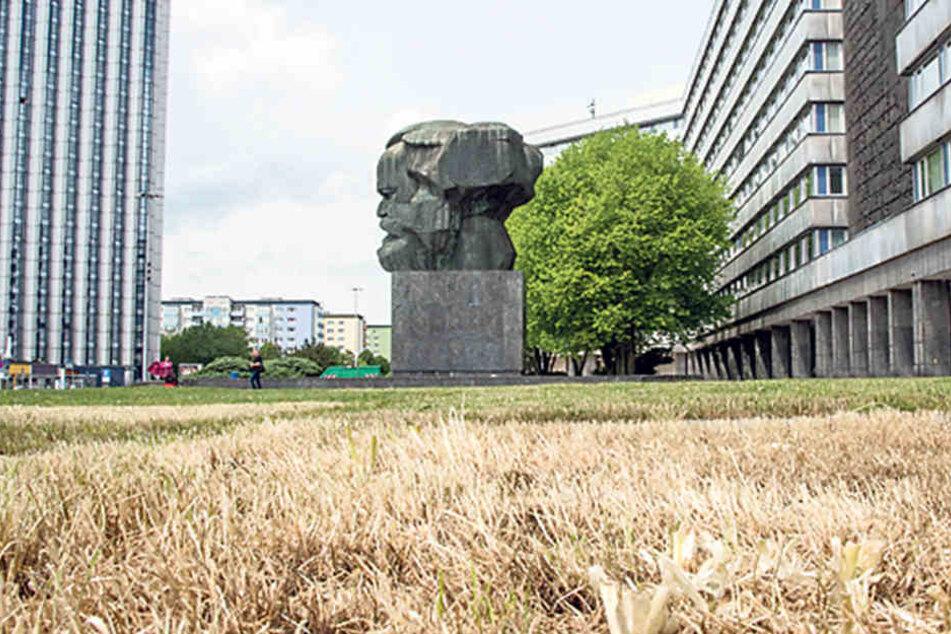 """Zum 875. Stadtjubiläum soll der """"Nischel"""" in einem Blütenmeer versinken."""
