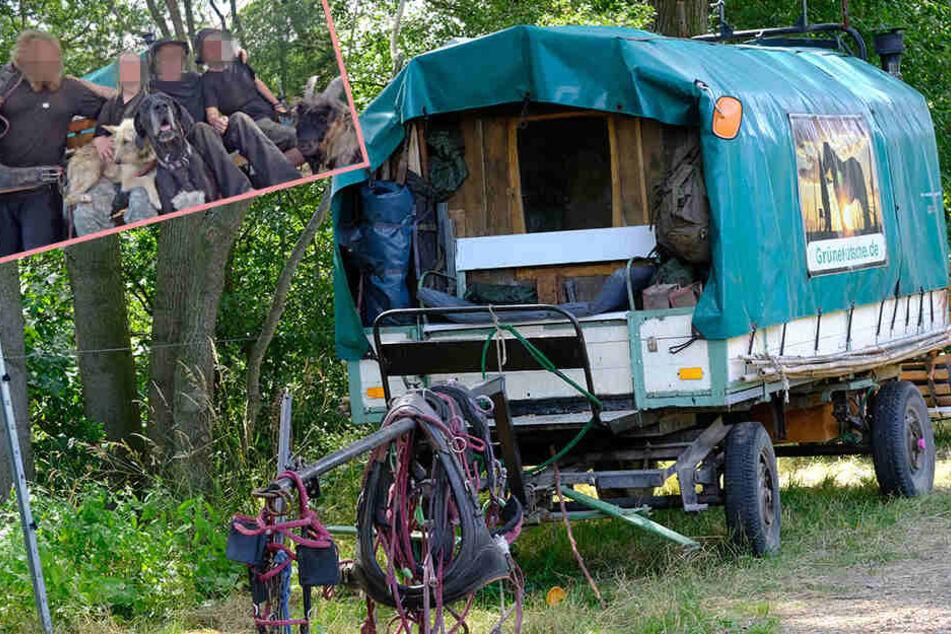 Irre Verfolgungsjagd! Aussteiger-Familie fährt Polizei mit Kutsche davon