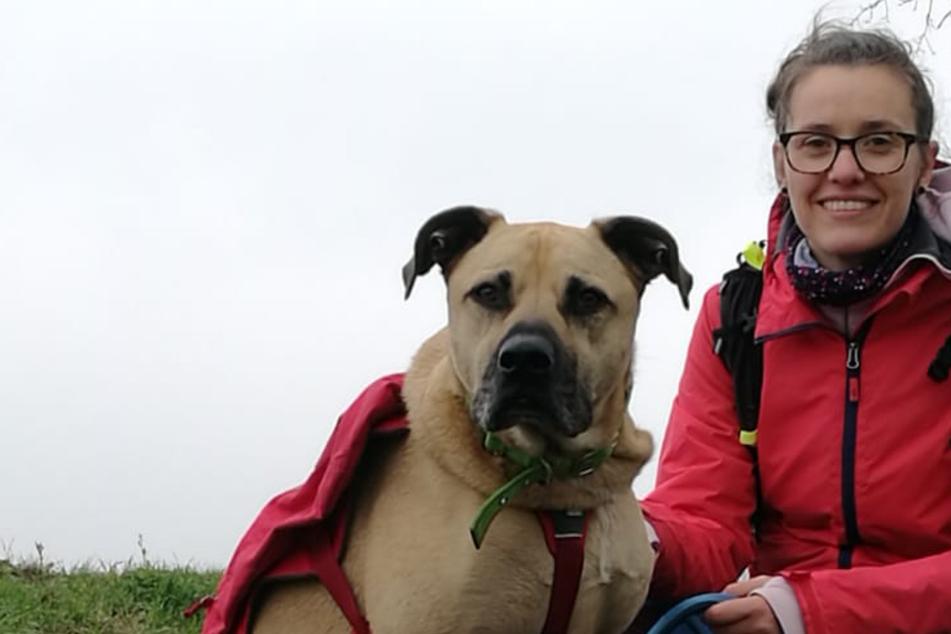 Für den Tierschutz: Leipzigerin wandert mit Hund Adam über 650 Kilometer
