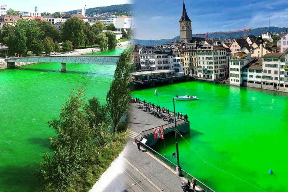 Fluss schimmert giftgrün! Was steckt dahinter?