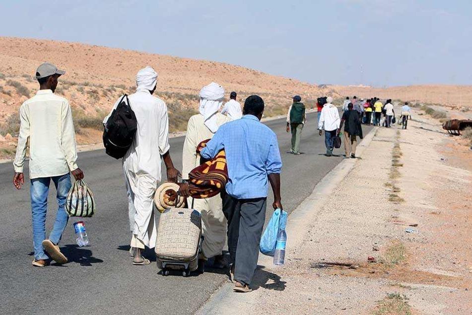 Der bislang unbekannte Erregerstamm wurde bei Flüchtlingen, die über das Horn von Afrika gekommen waren, festgestellt (Symbolbild).