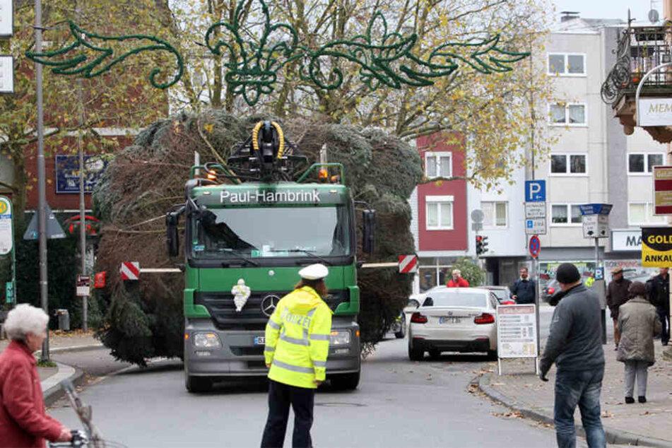 Mit einem Lkw wurde der Baum angefahren.