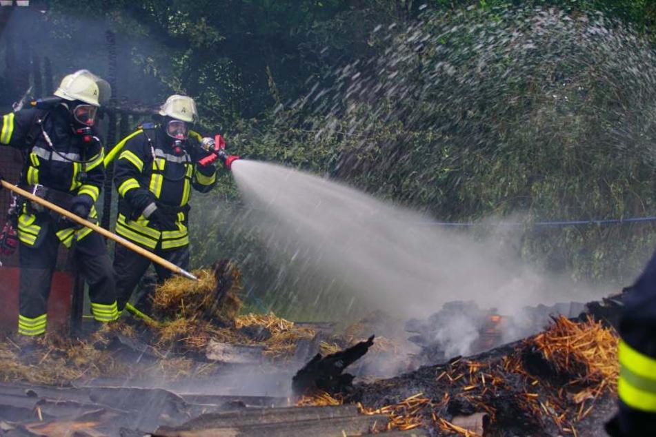 Feuerwehrmänner versuchen den Brand zu löschen.