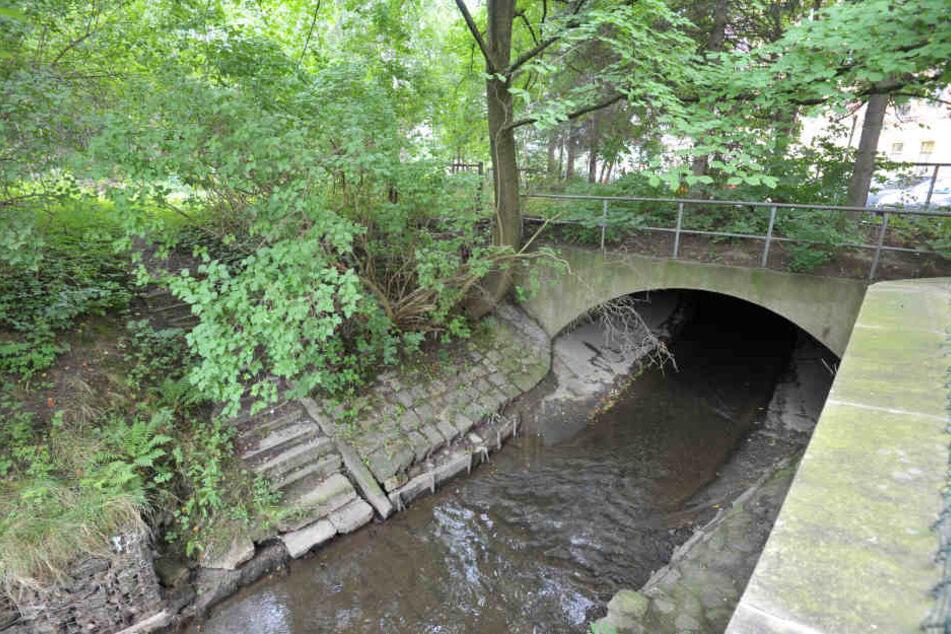 Der Pleißenbach soll nach den Vorstellungen der Stadt wieder ans Licht geholt  und langfristig renaturiert werden.