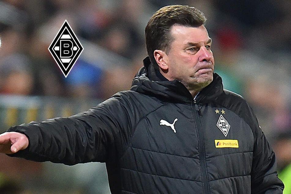Borussia Mönchengladbach trennt sich von Trainer Hecking zum Saisonende
