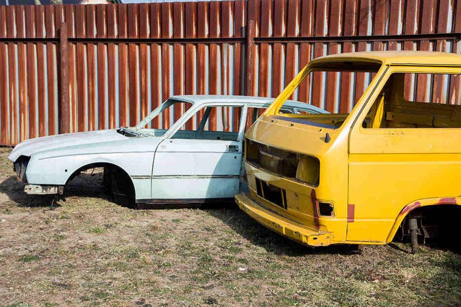 Ein Citroen Pallas von 1981 (l.) und VW T3 Pritsche: Die historische Karossen können jetzt in Schwepnitz friedlich rosten.