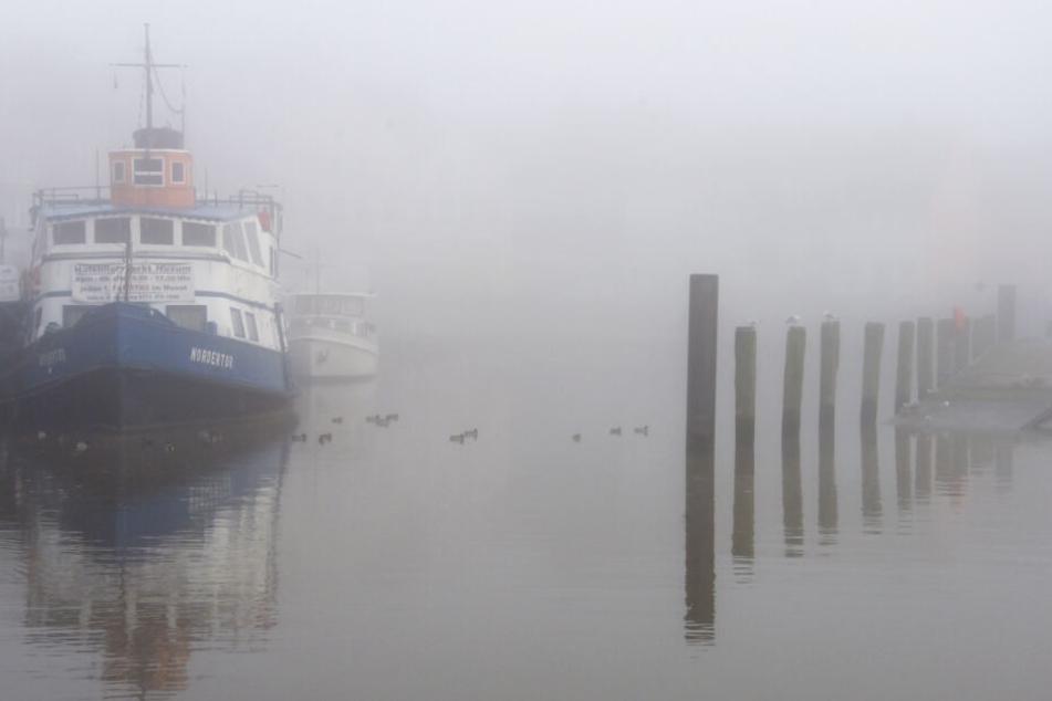 Nebel liegt über dem Hafen von Husum (Archivbild).