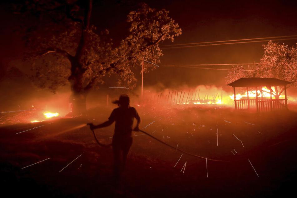 Susi Weaver, Managerin der Hawkeye Ranch, in den Mayacamas Mountains versucht ein Feuer zu löschen.