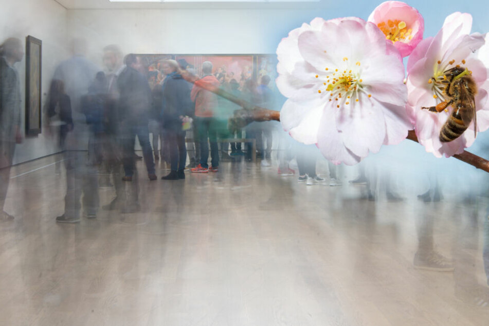Malle-Party, Kultur oder Gottesdienst? Hier könnt Ihr den Ostermontag verbringen!