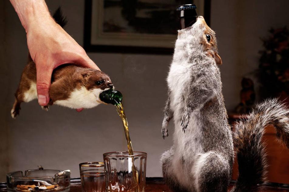 Dieses Bier kommt in einem toten Grauhörnchen