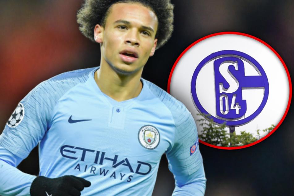 Der FC Bayern München will Leroy Sané an die Isar lotsen, auch für den FC Schalke 04 könnte sich der Transfer lohnen. (Bildmontage)