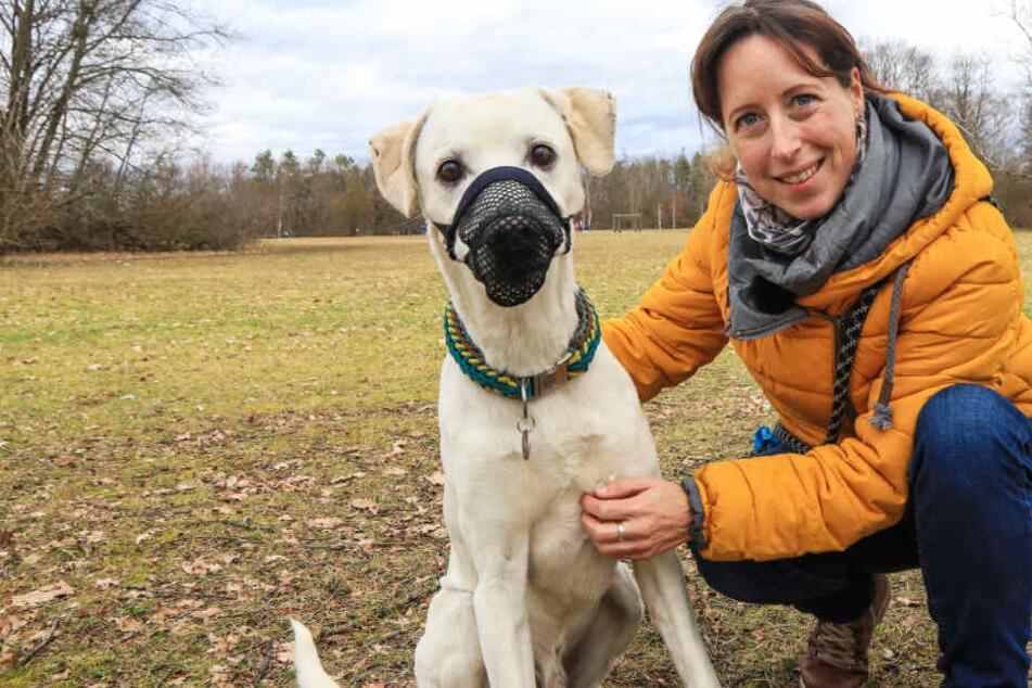 Nadine S. versucht alles, um Camino zu schützen: Ein Giftköderschutznetz könnte sein Leben retten.
