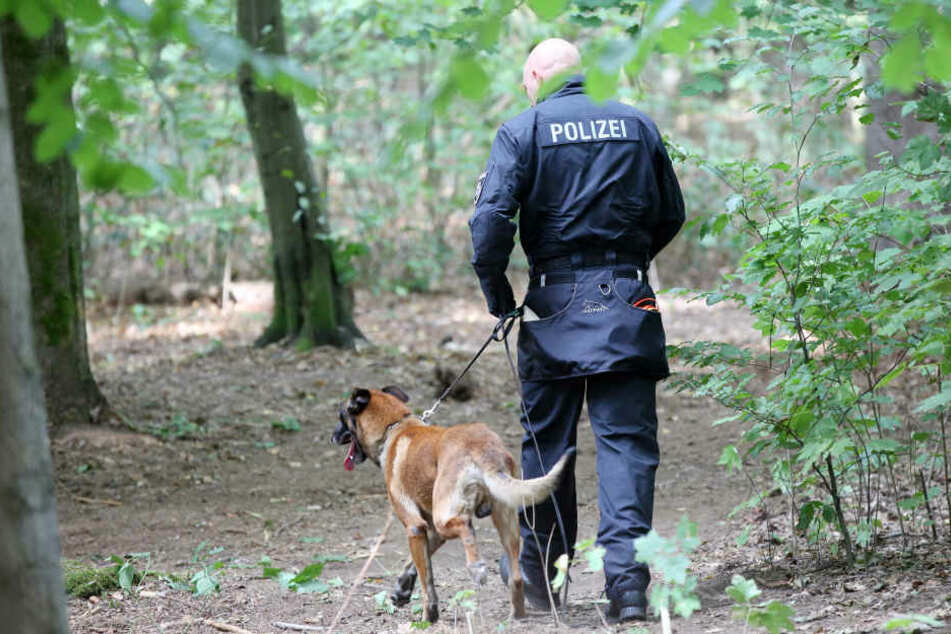 Mit einem Spürhund suchte die Polizei das Waldstück ab. (Symbolbild)