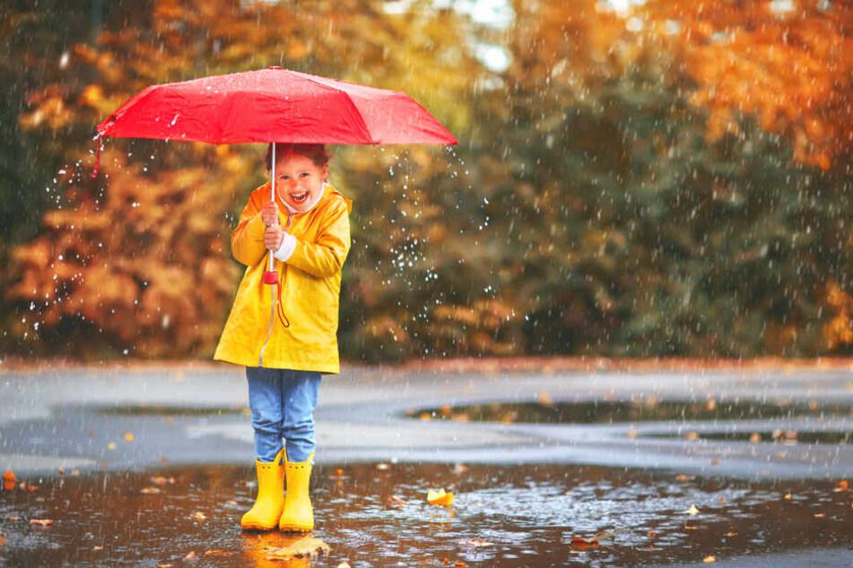 In NRW wird die durchschnittliche Regenmenge 2019 wohl nicht mehr erreicht werden.