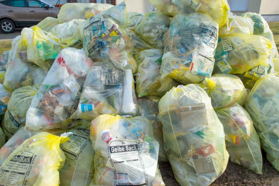 Ein Berg mit Gelben Säcken, gefüllt mit Verpackungsabfall, liegt auf einem Grundstück zu Abholung bereit. Die Landesregierung in Kiel soll nach Forderungen der SPD im Landtag eine Bundesratsinitiative gegen den Export von Plastikmüll starten.