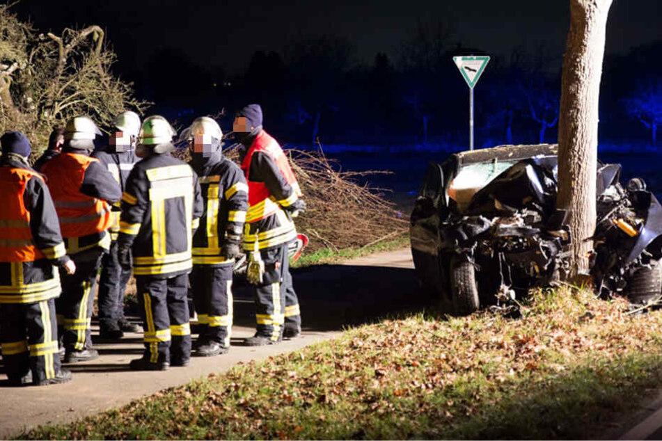 Tödlicher Crash: Baumstamm spaltet Auto