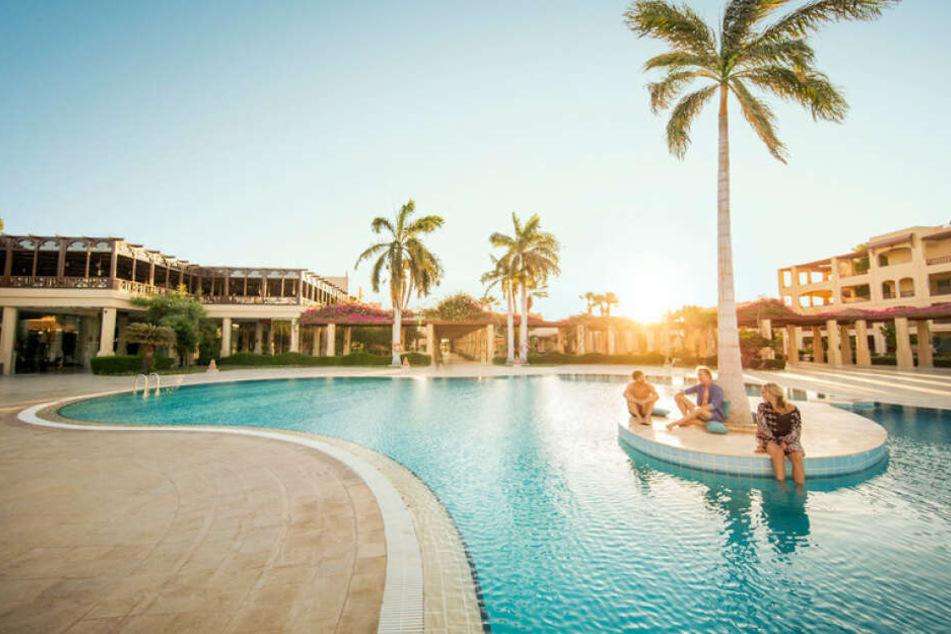 Pool, Palmen und Sonne? Der perfekte Ort, um mal richtig schön abschalten zu können.