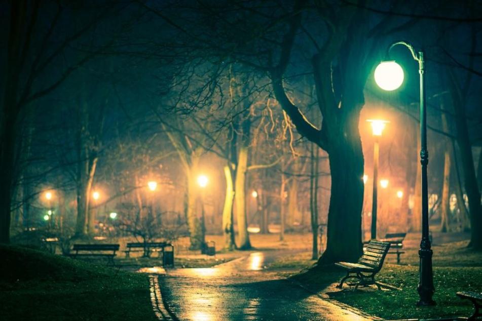 Durch einen ähnlichen Park ist ein Mann gelaufen, als er mit zwei Männern in einen Streit kam. Kurze Zeit später ist er bewusstlos. (Symbolbild)
