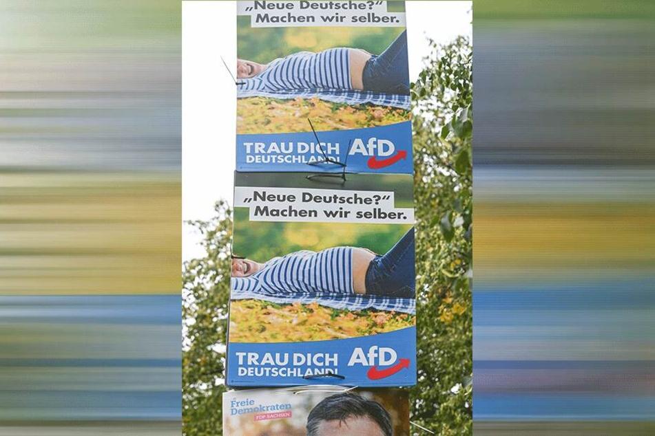 Die AfD-Plakate stammen noch aus dem Bundestagswahlkampf 2017.