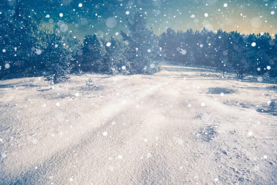 Winter und Kälte ist der Horror für die junge Kanadierin.