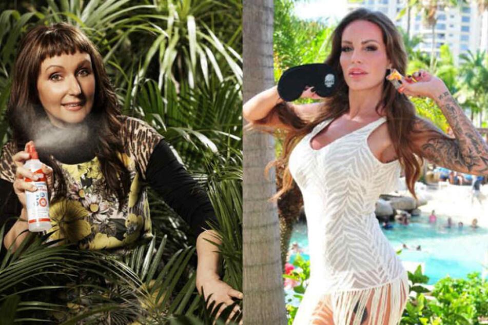 Wenn es nach Hanka Rackwitz (47) geht, hat Gina-Lisa (30) schon vor ihrem Einzug ins Dschungelcamp einen großen Fehler gemacht.