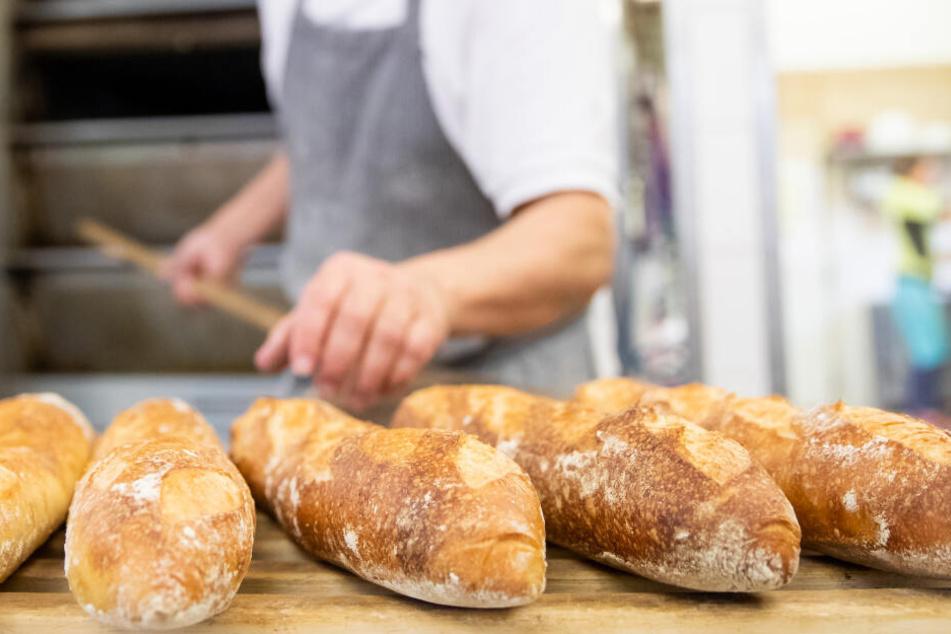 Ein Bäcker- und Konditormeister legt in der Backstube eines Betriebs Baguettes aus dem Ofen auf ein Brett. Die Zahl der Bäckereien ist in den vergangenen Jahren stark zurückgegangen.