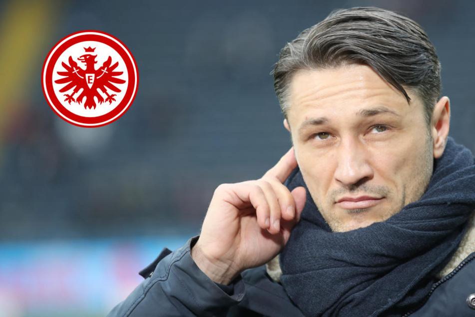 Eintracht hat kürzeste Winterpause der Bundesliga