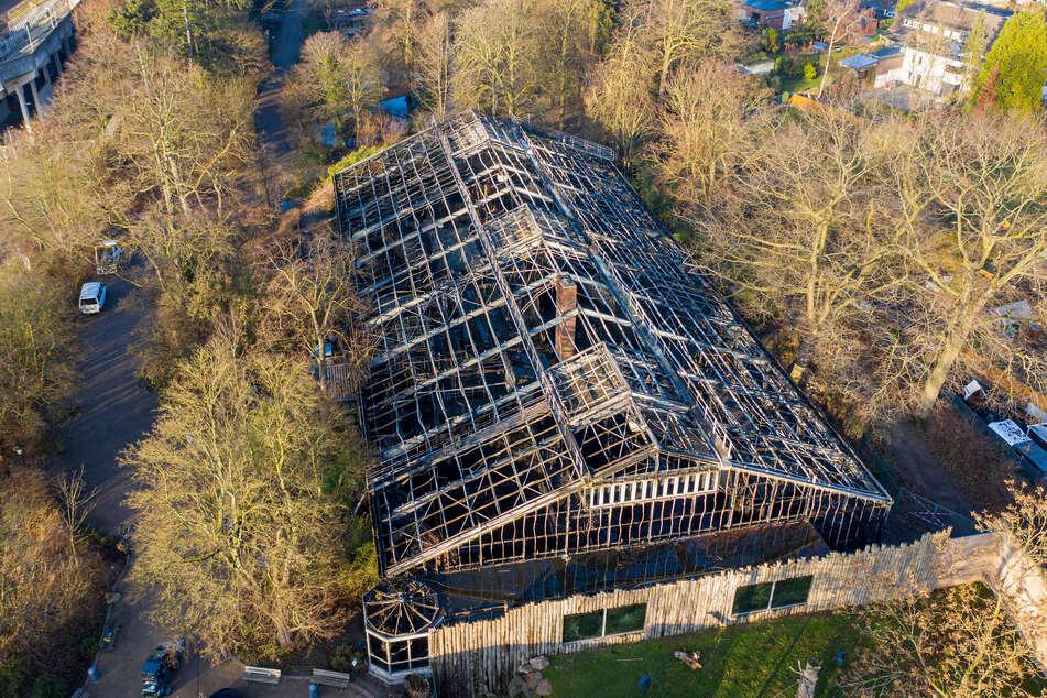 Das abgebrannte Affenhaus. (Archivbild)