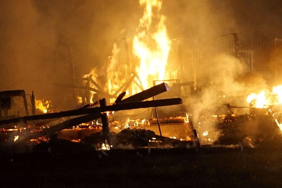 Feuerwehrmänner retten Schweine aus brennender Scheune: So bedankt sich der Bauer
