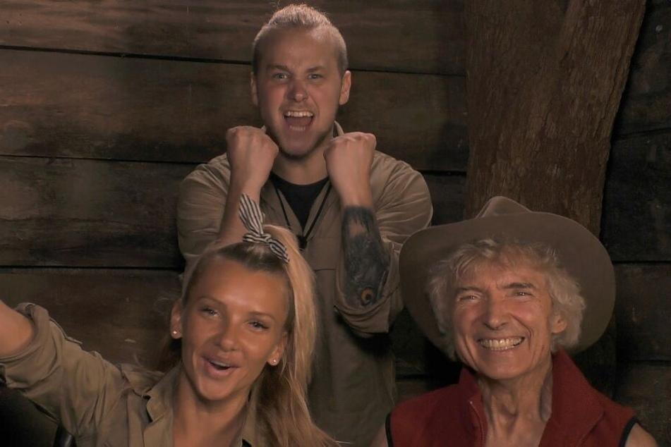 Sie waren die Dschungelfinalisten 2019: Felix (o.), Evelyn und Peter.