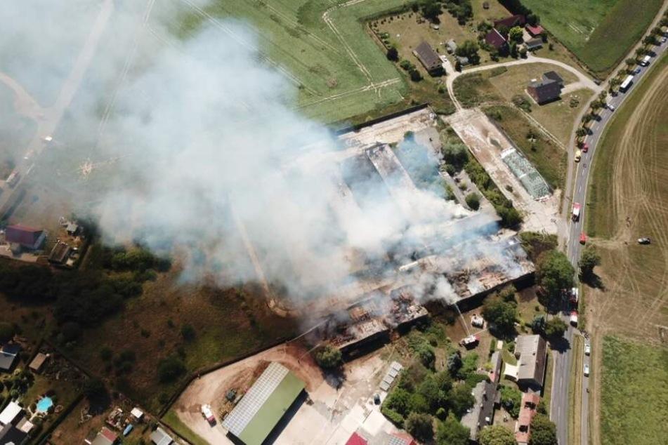 Die Heuscheunen mit einer gesamten Grundfläche von rund 1000 Quadratmetern standen in der Brandenburger Chaussee in Flammen.