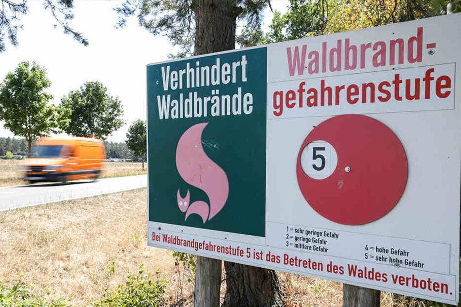 """""""Sehr hohe Gefahr"""": Schon jetzt wurde in vielen Regionen Sachsens Waldbrandstufe 5 ausgerufen."""