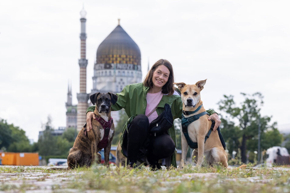 Maxi (34) genießt die Zeit mit ihren beiden Hunden Caspar (Mischling, 2 Jahre, r.) und Cleo (Boxer, 3 Jahre). In der Friedrichstadt (immer bezogen auf die Postleitzahlengebiet) sind besonders viele neue Hunde dazu gekommen.