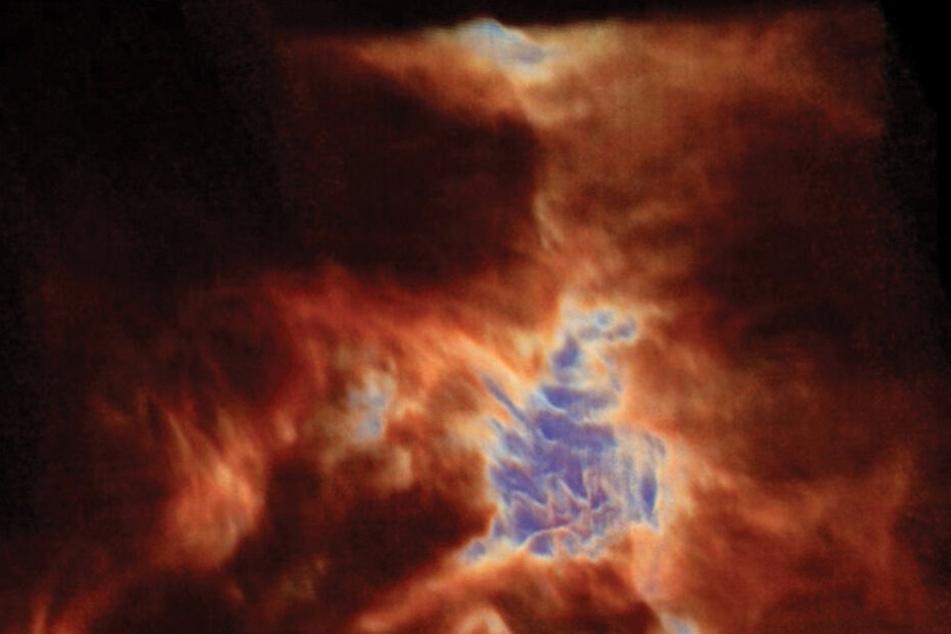 """Der """"Orion-Drache"""", wie er von den Wissenschaftlern schon genannt wird, ist in Wirklichkeit positiv geladenes Karbongas."""